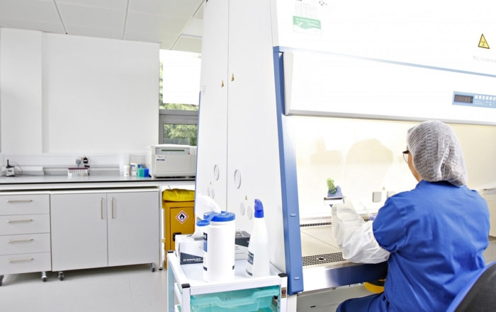 A REPROCELL scientist working in one of the company's stem cell laboratories.